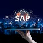 What's the buzz RISE with SAP all about?